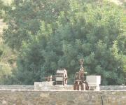 Greek History & Antiquities